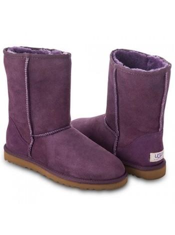 Угги классические фиолетовые замшевые UGG Australia Classic Short Purple